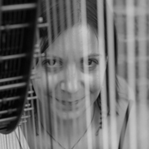 Sharron | Harpist Scotland