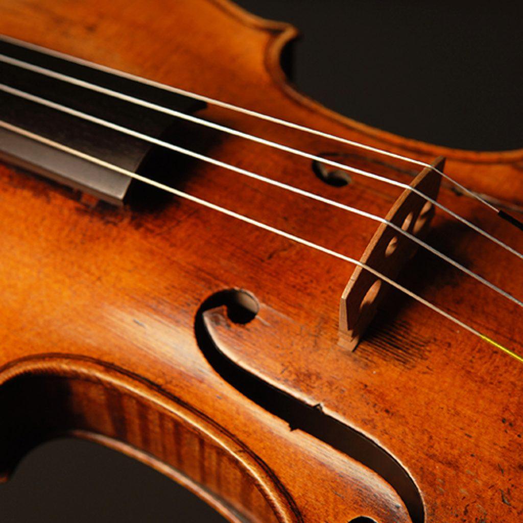 David | Violin, Viola, Irish Fiddle