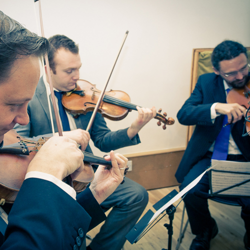 String Quartet | Nelson String Quartet